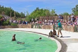 Tierpark Monde Sauvage – Aywaille